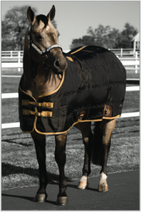 420D Pro Equine Stable Blanket