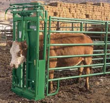 Heavy Duty Self-Catch Head Gate